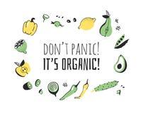 Hand getrokken reeks groenten, vruchten en eco vriendschappelijke woorden Vector artistiek het voedsel en de Veganistcitaat van d royalty-vrije illustratie