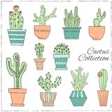 Hand getrokken Reeks van Cactus in de potten vector illustratie