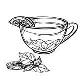 Hand getrokken Schets van Thee Kop thee met munt en kalk, citroen Stock Foto's
