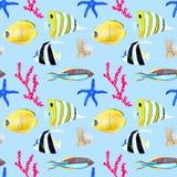 Hand getrokken seemless patroon in waterverf overzees wereld natuurlijk element Koralenshells vissen op baby blauwe achtergrond stock foto's