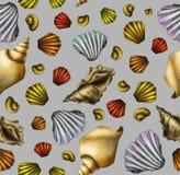 Hand getrokken shell naadloos patroon Stock Afbeelding