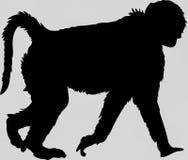 Hand getrokken silhouet van een wilde baviaan vector illustratie