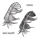 Hand getrokken silhouetten van veren in zwart-wit Vector illustratie Stock Foto's