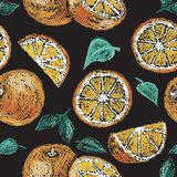 Hand getrokken sinaasappel Royalty-vrije Stock Afbeeldingen