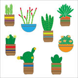 Hand getrokken succulente reeks Krabbel bloemen in potten Botanische vector Royalty-vrije Stock Afbeeldingen