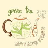 Hand getrokken theepot met groene thee Stock Afbeeldingen
