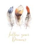 Hand getrokken trillende de veerreeks van waterverfschilderijen De vleugels van de Bohostijl Illustratie die op wit wordt geïsole royalty-vrije illustratie