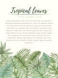 Hand getrokken tropische palmbladenkaart Royalty-vrije Stock Foto