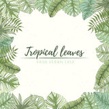 Hand getrokken tropische palmbladenkaart Stock Afbeelding