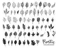 Hand getrokken uitstekende bladeren Rustiek decoratief vectorontwerp Stock Foto's