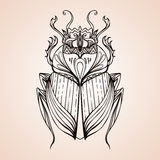 Hand getrokken uitstekende mestkever Insect met krabbelpatroon Royalty-vrije Stock Afbeelding