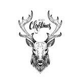 Hand getrokken uitstekende wilde herten met het Vrolijke Kerstmis van letters voorzien Stock Foto