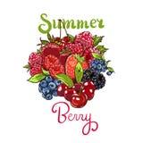 Hand getrokken vector vastgestelde Letterig-kleurrijke de tellersillustratie van de de zomerbes De bessen die krabbelschets grave stock illustratie