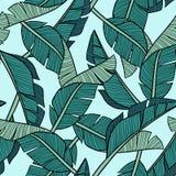 Hand getrokken vectorbanaanbladeren op lichtblauwe achtergrond royalty-vrije illustratie