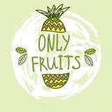 Hand getrokken vectorelementen Slechts Vruchten embleem Kan voor advertenties, uithangborden, identiteit en Webontwerpen worden g Stock Fotografie