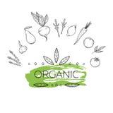 Hand getrokken vectorillustratie - Logotype van gezond voedsel royalty-vrije illustratie