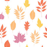 Hand getrokken vectorillustratie Naadloos patroon Royalty-vrije Stock Fotografie