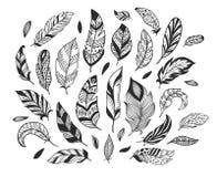 Hand getrokken veren Schetsvogelveer, retro artistieke pen en de vogels die van de tekeningsinkt geïsoleerde vector bevederen vector illustratie