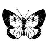 Hand getrokken vlinder Royalty-vrije Stock Afbeeldingen