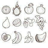Hand getrokken vruchten inzameling Stock Illustratie