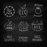 Hand getrokken wachtwoorden over gezond voedsel - organische eco, natuurlijk, Royalty-vrije Stock Fotografie
