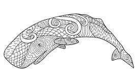 Hand getrokken walvis voor antispannings Kleurende Pagina royalty-vrije illustratie