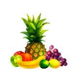 Hand getrokken waterverf verse organische die vruchten illustratie op witte achtergrond wordt geplaatst Stock Afbeelding