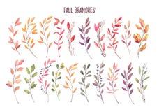 Hand getrokken waterverfillustraties Autumn Botanical clipart S royalty-vrije illustratie