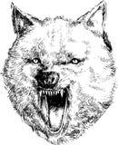 Hand getrokken wolfshoofd Stock Afbeelding