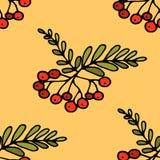Hand getrokken Zentangle-patroon met romanberry Stock Afbeelding