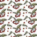 Hand getrokken Zentangle-patroon met romanberry Stock Afbeeldingen