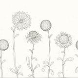 Hand getrokken Zonnebloem. Bloemenachtergrond. vector illustratie