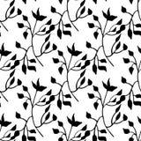 Hand getrokken zwart-wit naadloos patroon met bladelementen Stock Foto's