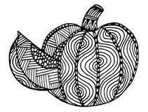 Hand gezeichnet, dekorativer Schwarzweiss-Kürbis Lizenzfreies Stockfoto