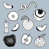 Hand gezeichnete Apfelillustration Stockbild
