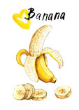 Hand gezeichnete Aquarellillustration der Banane Stockfotos