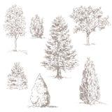 Hand gezeichnete Bäume Stockfoto