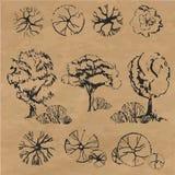 Hand gezeichnete Bäume eingestellt Lizenzfreies Stockfoto
