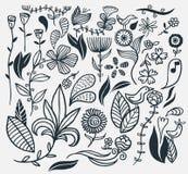 Hand gezeichnete Blumen Stockfotos
