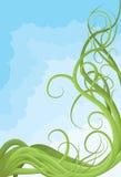 Hand gezeichnete dargestellte durcheinandergebrachte Rebe Lizenzfreies Stockfoto
