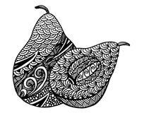 Hand gezeichnete dekorative Avocado, Illustration Lizenzfreie Stockfotografie
