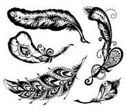Hand gezeichnete Federn eingestellt auf weißen Hintergrund Stockfoto
