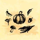 Hand gezeichnete Gekritzelernteelemente Mais, Kürbis, Blatt, Pilze, Eichel Schwarze Bilder, gelber watercor Hintergrund Stockfotos