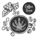Hand gezeichnete Illustration des Kaffees Lizenzfreies Stockfoto