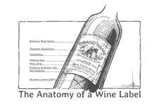 Hand gezeichnete Illustration einer Weinflasche stock abbildung