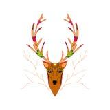 Hand gezeichnete Illustration von Weihnachtsrotwild Stockbild