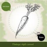 Hand gezeichnete Karotte Organisches eco Gemüselebensmittelhintergrund Lizenzfreie Stockfotografie