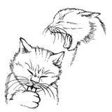 Hand gezeichnete Katze Stockfotografie