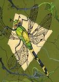 Hand gezeichnete Libelle auf einem grünen Hintergrund lizenzfreie stockfotografie