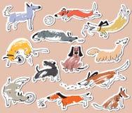 Hand gezeichnete nette Hunde des Gekritzels Aufkleber eingestellt mit plaing Haustieren mit Stockfoto